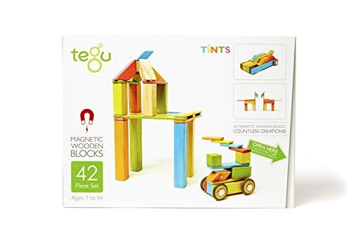 Tegu(テグ)積み木 マグネットブロック 42ピース/ティント TYTU00501