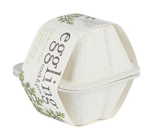 聖新陶芸 エッグリング エコフレンドリー イタリアンパセリ EG-4802