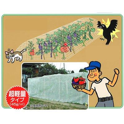 GTC 忌避商品/防鳥ネット 806181