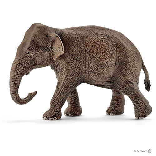 シュライヒ ワイルドライフ インド象 (メス) フィギュア 14753