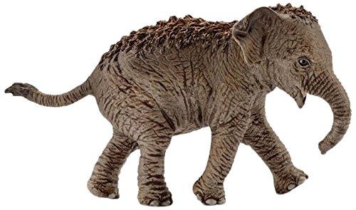 シュライヒ ワイルドライフ インド象 (仔) フィギュア 14755