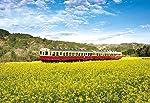 300ピース ジグソーパズル 菜の花列車(千葉) (26x38cm)