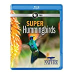 Nature: Super Hummingbirds [Blu-ray] [Import]