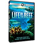 Life on the Reef [Blu-ray] [Import]