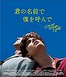 君の名前で僕を呼んで [Blu-ray]