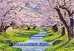 300ピース ジグソーパズル 桜の観音寺川-福島 (26×38cm)