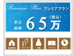 65万円 プレミアムプラン