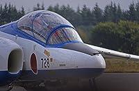 Kenko ミラーレンズ 400mm F8 作例