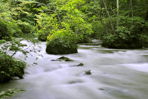 NDフィルター使用後(川の流れの撮影)