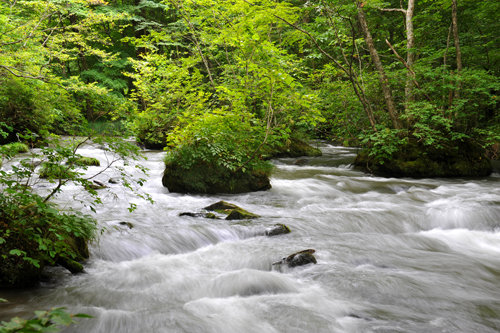 NDフィルター使用前(川の流れの撮影)