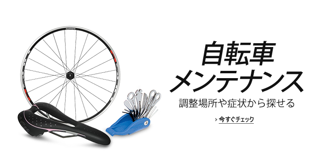 bicycle_Maintenancguide