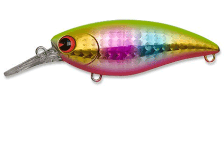 fishing_Ima_Lures_Cate02