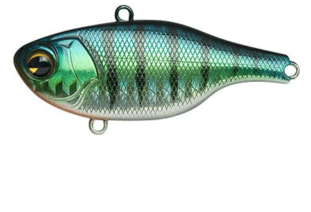 fishing_Ima_Lures_Cate03