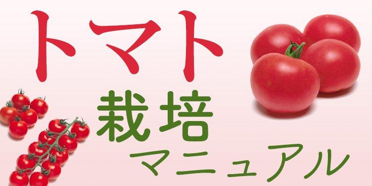 トマト栽培マニュアル