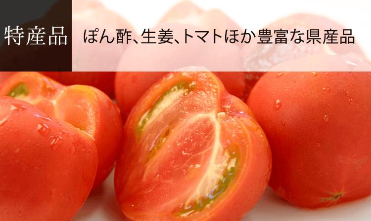 高知県の特産品