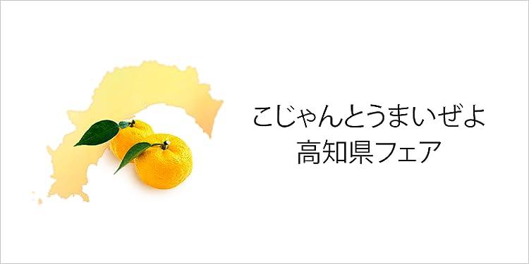 高知県フェア(高知県ご当地グルメ物産展)