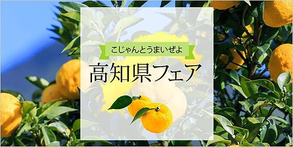 高知県フェア