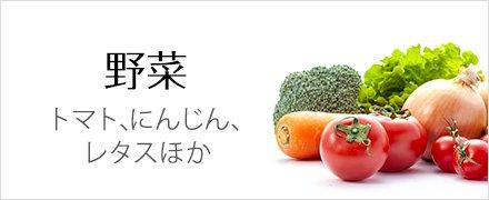 野菜 トマト、にんじん、レタスほか