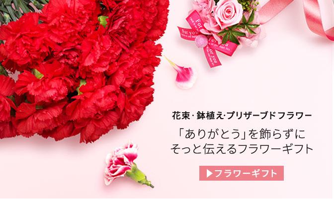 母の日のプレゼントにおすすめの花束・鉢植え・ブリザーブドフラワーギフト