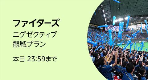 日本ハムファイターズ 特別観戦チケット