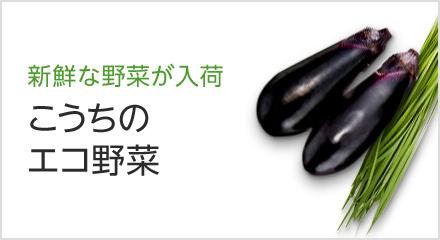こうちのエコ野菜