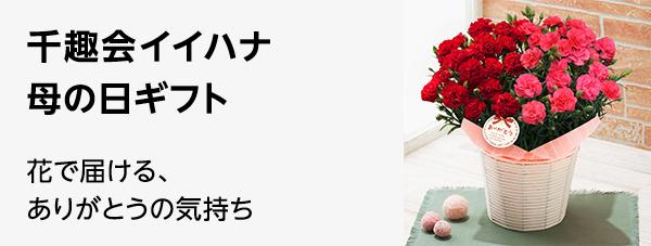千趣会イイハナ 花で届けるありがとう