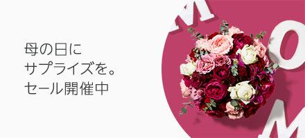 母の日セール開催中 5/14(火)まで