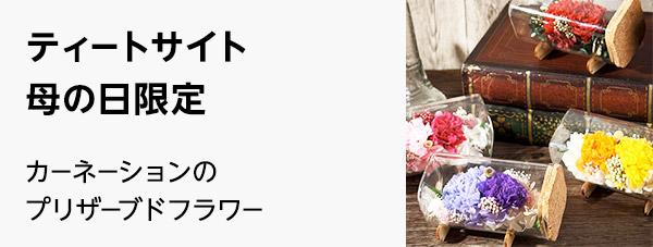 株式会社スミレ(ティートサイト)
