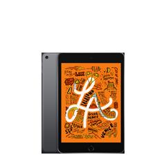 iPad mini (7.9インチ)