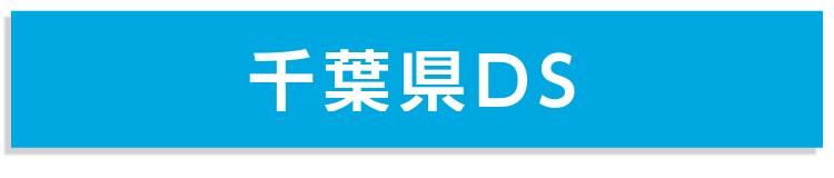 千葉県DS