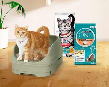 猫の健康を守るおまとめ買いセール