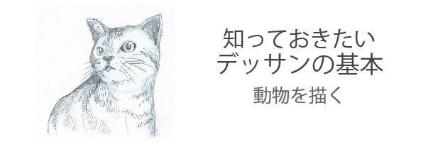 絵具・画材入門ガイド :知っておきたいデッサンの基本