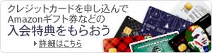 クレジットカード&保険ストア