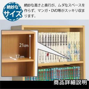 BDラック(BOOK&DVD) 文庫本ラック