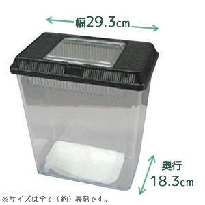 飼育ケース(コバエ防止シート付)CVF-M