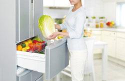 東芝 冷凍冷蔵庫 置けちゃうスリム 427L 5ドア片開きタイプ シャンパンシルバー GR-D43N(NS)