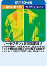 ヒラカワ 2011年モデル ひんやりジェルマット (ハニカムメッシュ) シングル(90×90)