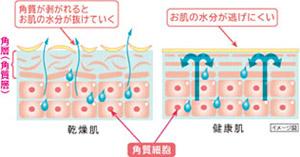HITACHI 保湿サポート器 ハダクリエ CM-N810-P