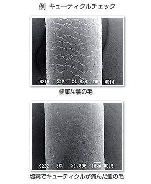 三菱レイヨン・クリンスイ 浄水シャワー SK106W-GR