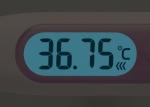 シチズン 電子体温計 口内専用 婦人用 CTEB503L