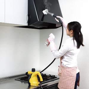 アイリスオーヤマ スチームクリーナー 油汚れ用洗剤 STMP-017