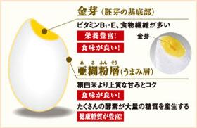 ZOJIRUSHI 圧力IH炊飯ジャー【3合炊き】 NP-RW05-WB