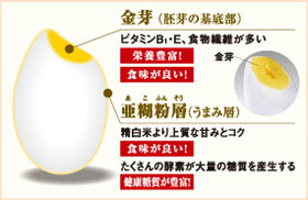 ZOJIRUSHI 圧力IH炊飯ジャー【3合炊き】 NP-RJ05-TA