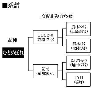 生鮮米 宮城県産 白米 ひとめぼれ 1.8kg 平成25年産