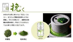 SHARP HEALSIO お茶PRESSO レッド系 TE-GS10A-R