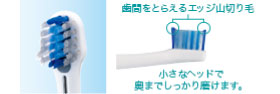 Panasonic 音波振動ハブラシ ドルツ シルバー調 EW-DE43-S
