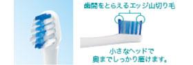 Panasonic 音波振動ハブラシ ドルツ 青 EW-DL12-A