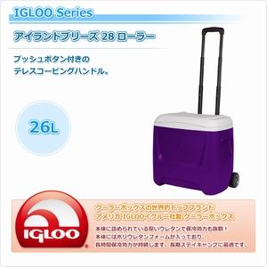igloo(イグルー) (IGLAC) アイランドブリーズ 28 ローラー パープル #45671