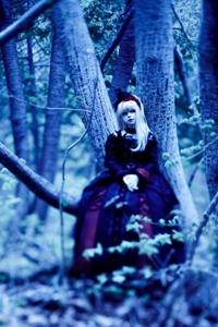 イドへ至る森へ至るイド