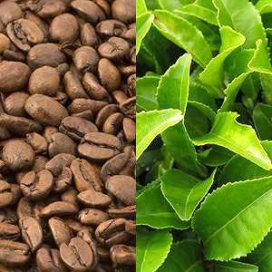 カフェインエキス&緑茶エキス